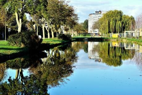 Reflection(3)....