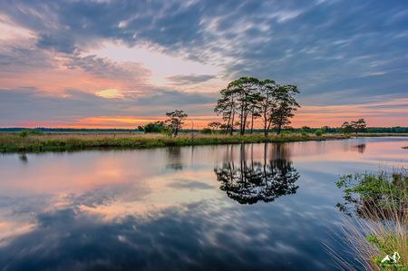 Dwingelderveld - Mooi bomen spiegeling in het nationaal Park Dwingelderveld - foto door GijsR op 06-01-2021 - deze foto bevat: wolken, water, sunset, natuur, avond, zonsondergang, heide, drenthe, silhouette, reflection, bomen, holland, nederland, landscape, tree, dwingelderveld, trees, dwingeloo, heath, lange sluitertijd, The Netherlands, irix, k-3, irix 15mm