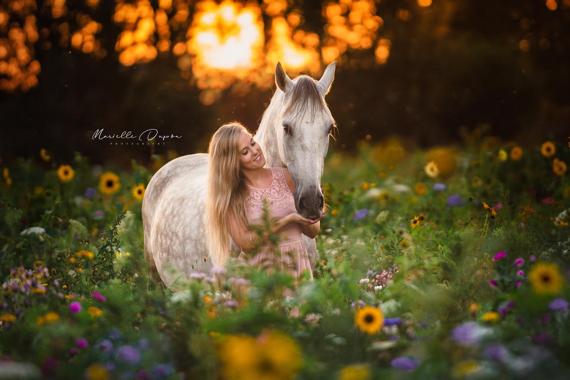 Flowers & sunsets - Wat een feestje om deze twee prachtige modellen in dit mooie bloemenveld te kunnen fotograferen. Geweldig concept ook een pluktuin! Hier kun je voor  - foto door Marielllee op 06-09-2020 - deze foto bevat: zonnebloem, sunset, nature, paarden, paard, zonsondergang, rozen, bloemen, insecten, klaproos, pony, zomer, margriet, nederland, horses, flower, zonnebloemen, flowers, dordrecht, bijen, korenbloem, bee, prachtig, morgenster, fotoshoot, kamille, nazomer, horse, wildflower, augustus, pre, evening, pferde, netherlands, wildflowers, photoshoot, sunsets, pferd, Wilde bloemen, herik, pluktuin, love nature, flower-garden