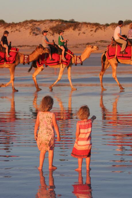 kamelen op cable beach (2)