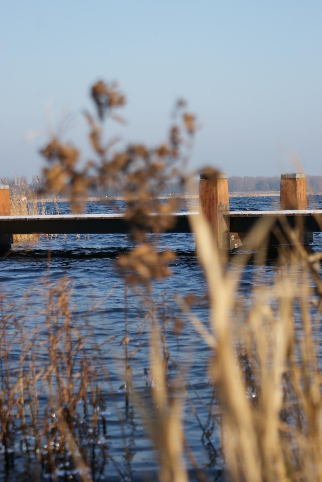 Nature 5 - Dit is een serie over de natuur in Noord-Holland.Fraai landschap vastgelegd met briljante opnames. Ijzige middag samen met Erik (Kire op Zoom).  Ser - foto door maarten1971 op 31-12-2008 - deze foto bevat: do, kou, sony, ijzig, alpha, oostzaan, twiske