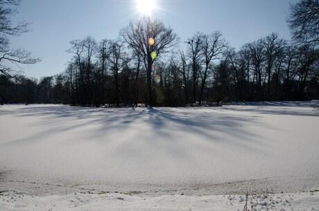 Winter 2012; park Sonsbeek in Arnhem