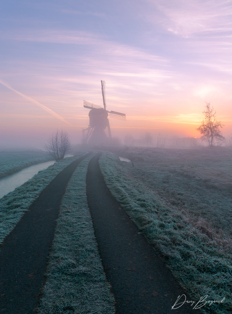 Foggy sunrise in the Netherlands