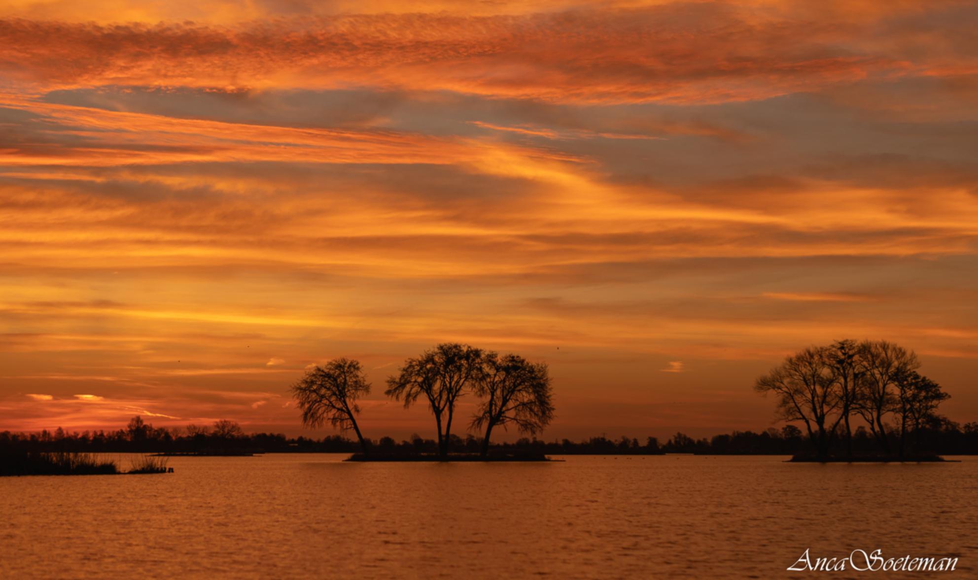 Saharazand zonsopkomst bij Reeuwijk - Magische zonsopkomst in Reeuwijk. - foto door ancasoet op 28-02-2021 - deze foto bevat: water, natuur, landschap, zonsopkomst - Deze foto mag gebruikt worden in een Zoom.nl publicatie