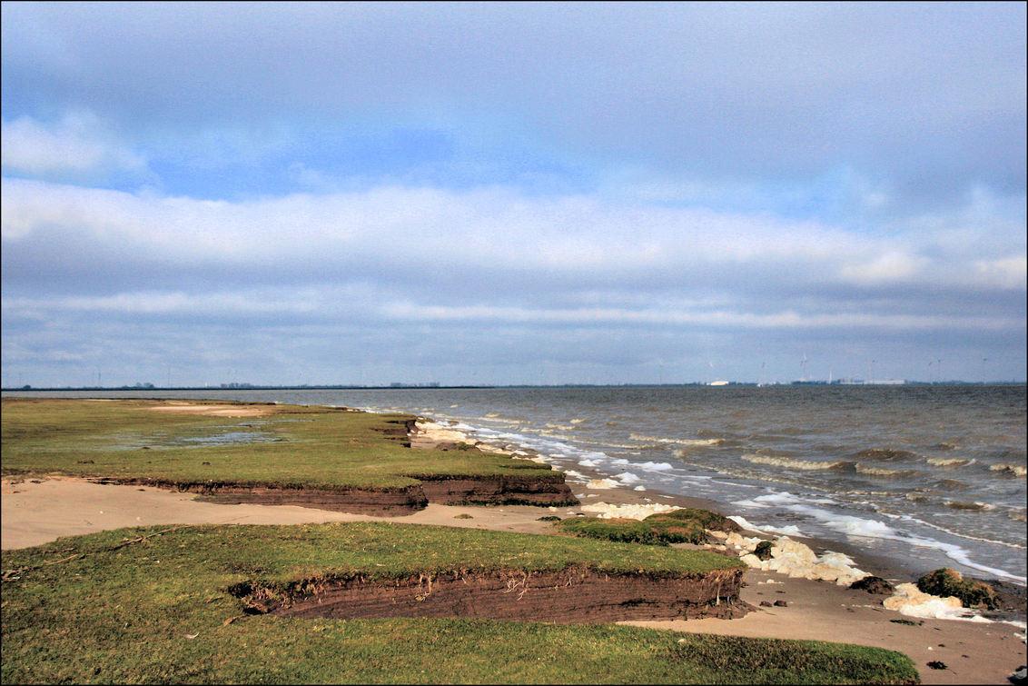 De Dollard kust - Vanmiddag een fietstocht o.a langs de kust van de Dollard - foto door Teunis Haveman op 30-01-2021 - deze foto bevat: lucht, zee, water, dijk, natuur, zand, kust