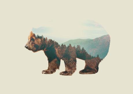 Double exposure bear