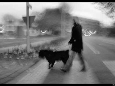 Ochtend wandeling