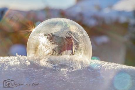 Frozen Bubble soft