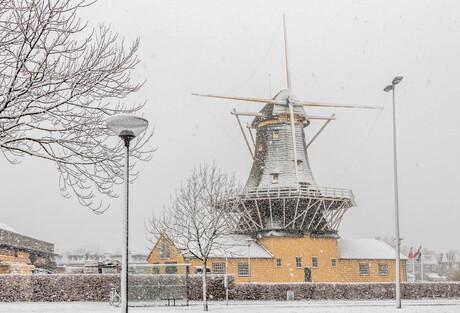 molen in de sneeuw