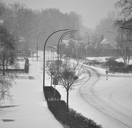 0805 Eerste sneeuwdag.