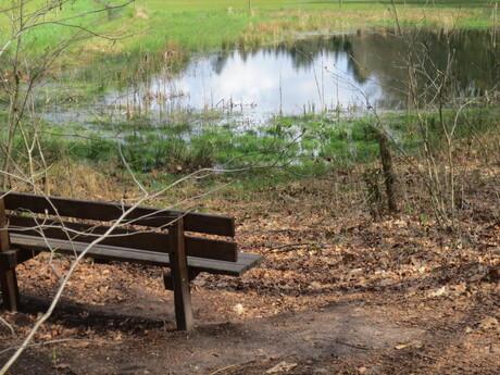 oase van rust