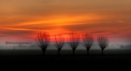 Sunrise in de Betuwe