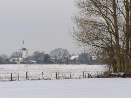 molen in winters landschap
