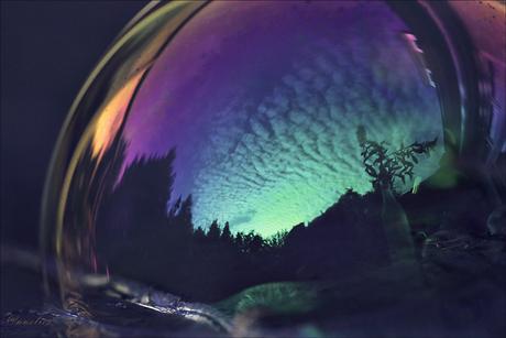 zonsopkomst ,in zeepbel....