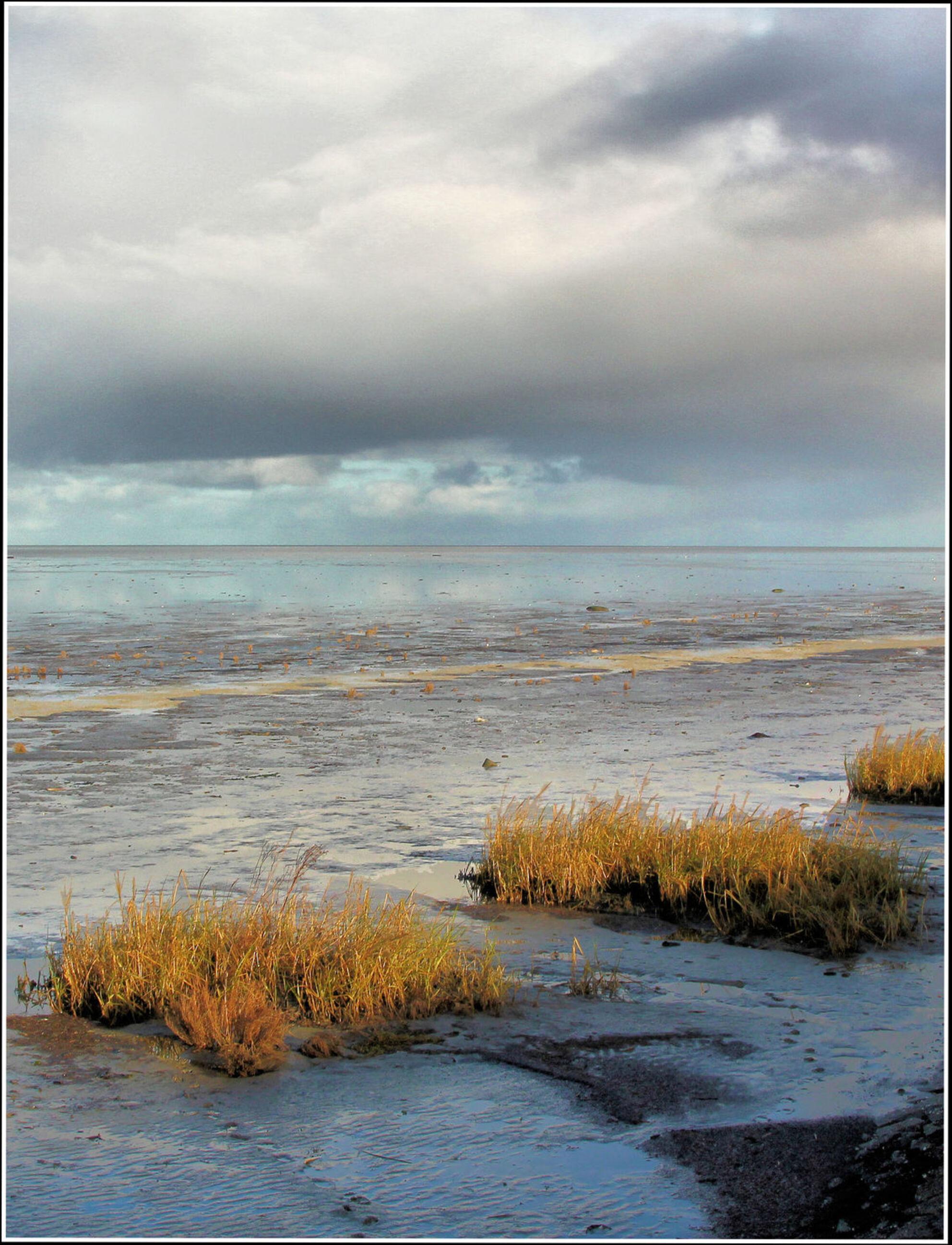 Image1Balgzanddijk zicht op de Wadden - - - foto door jelle13 op 20-02-2021 - deze foto bevat: lucht, wolken, water, natuur, licht, landschap, voorjaar, nederland - Deze foto mag gebruikt worden in een Zoom.nl publicatie