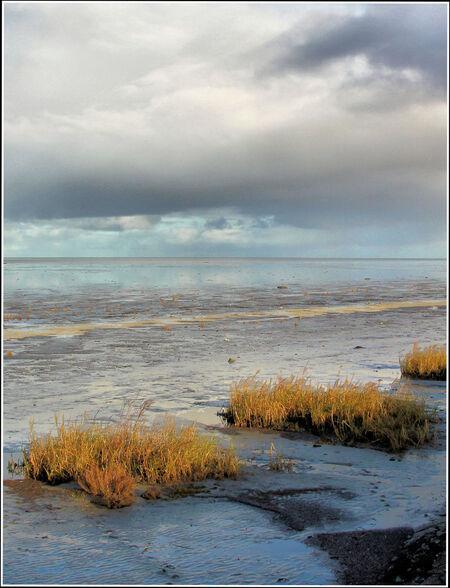 Image1Balgzanddijk zicht op de Wadden - - - foto door jelle13 op 20-02-2021 - deze foto bevat: lucht, wolken, water, natuur, licht, landschap, voorjaar, nederland