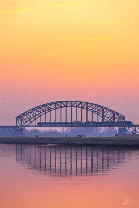Zonsondergang in een rivierenlandschap - Een trein rijdt over een spoorbrug, in de uiterwaarden grazen koeien en de zon gaat onder in een  oranje gloed boven een vlakke rivier. - foto door arjan-foto op 13-04-2021 - locatie: Arnhem, Nederland - deze foto bevat: landschap, rivieren, rivier, brug, zonsondergang, spoorbrug, oranje, uiterwaarden, rivierenlandschap, hollands, nederland, kleurverloop, gradient, trein, avond, lucht, spiegeling, koeien, water, lucht, wolk, nagloeien, meer, schemer, atmosferisch fenomeen, brug, horizon, balkbrug