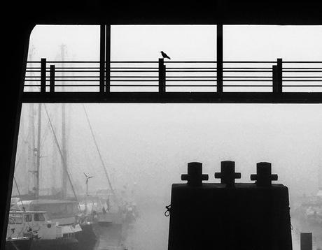 NDSM-werf in de mist