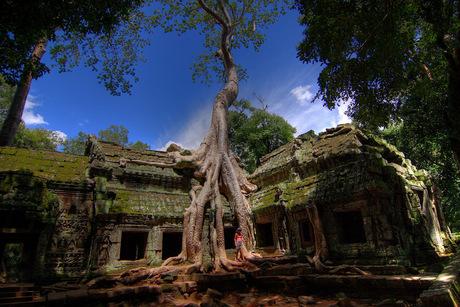 Boeddhistisch klooster Ta Prohm in Cambodja