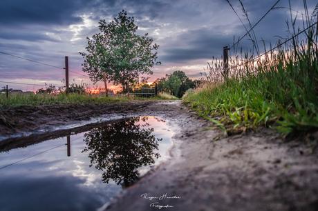De veldweg na de regen in de ondergaande zon.