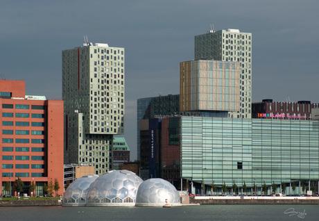 Rotterdam15