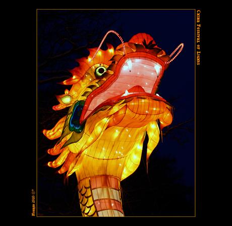 China festival of Light IV