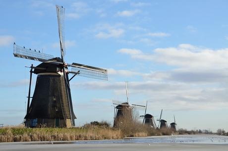 Typisch nederlands! Foto Esther