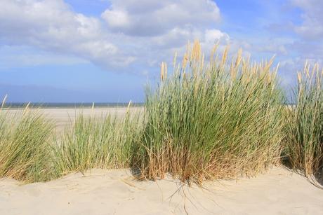 duin,strand & zee...
