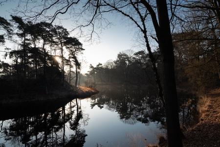 Water - Weerspiegeling in het water.. - foto door basvogelaars52 op 08-04-2021 - locatie: Vught, Nederland - deze foto bevat: natuur, water, bomen, zonsopgang, water, lucht, watervoorraden, atmosfeer, wolk, natuurlijk landschap, boom, hout, takje, meer
