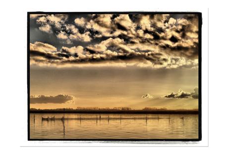 Fuiken in Lauwersmeer