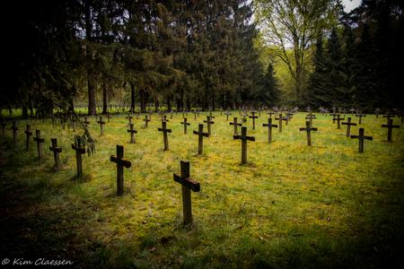 Urbex kerkhof 02 - Gisteren voor het eerst deze locatie 'Cemetery of the insane' bezocht. - foto door KC78 op 28-04-2015 - deze foto bevat: gras, groen, natuur, geel, landschap, bos, bomen, graven, kerkhof, graf, begraafplaats, belgie, urbex, ue, urban exploration, Cemetery of the Insane