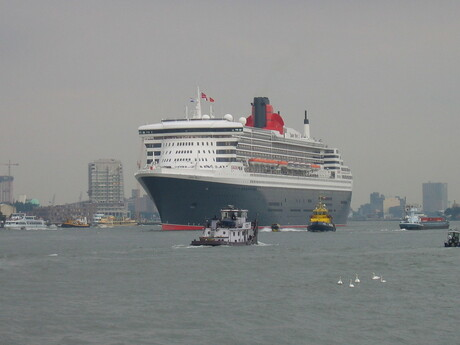 Queen Mary 2 ( 2 )