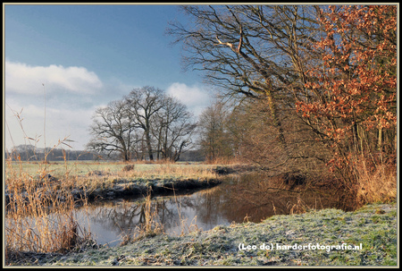 Landschap Dickninge - Landgoed Dickninge nabij De Wijk/Meppel. Een fraai wandelgebied langs de rivier De Reest, die kabbelt door het landschap en zorgt voor sfeervolle mom - foto door deharder op 21-02-2017 - deze foto bevat: lucht, water, natuur, sneeuw, landschap, bomen, rivier, meppel, dickninge, deharder, dereest