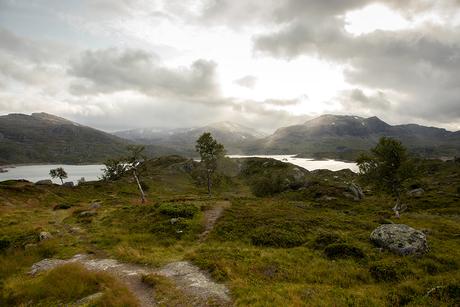 Noorwegen - karijn fotografie -1346