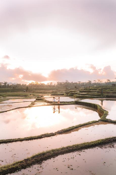 Wandering through the rice paddies Indonesia