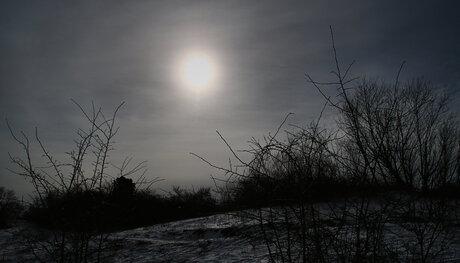 ...de grijze winter.....