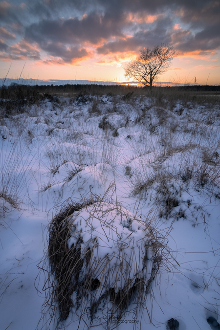 Winterse heide - - - foto door ArjanSijtsma op 20-02-2021 - deze foto bevat: lucht, wolken, zon, natuur, licht, sneeuw, winter, avond, zonsondergang, ijs, spiegeling, landschap, heide, duinen, tegenlicht, bomen, meer, koud, lange sluitertijd, Sneeuwduinen, duurswouderheide