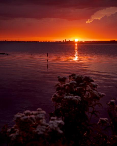 A sunset story (2/3)