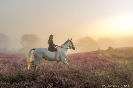 Amazone op haar paard tijdens de zonsopkomst