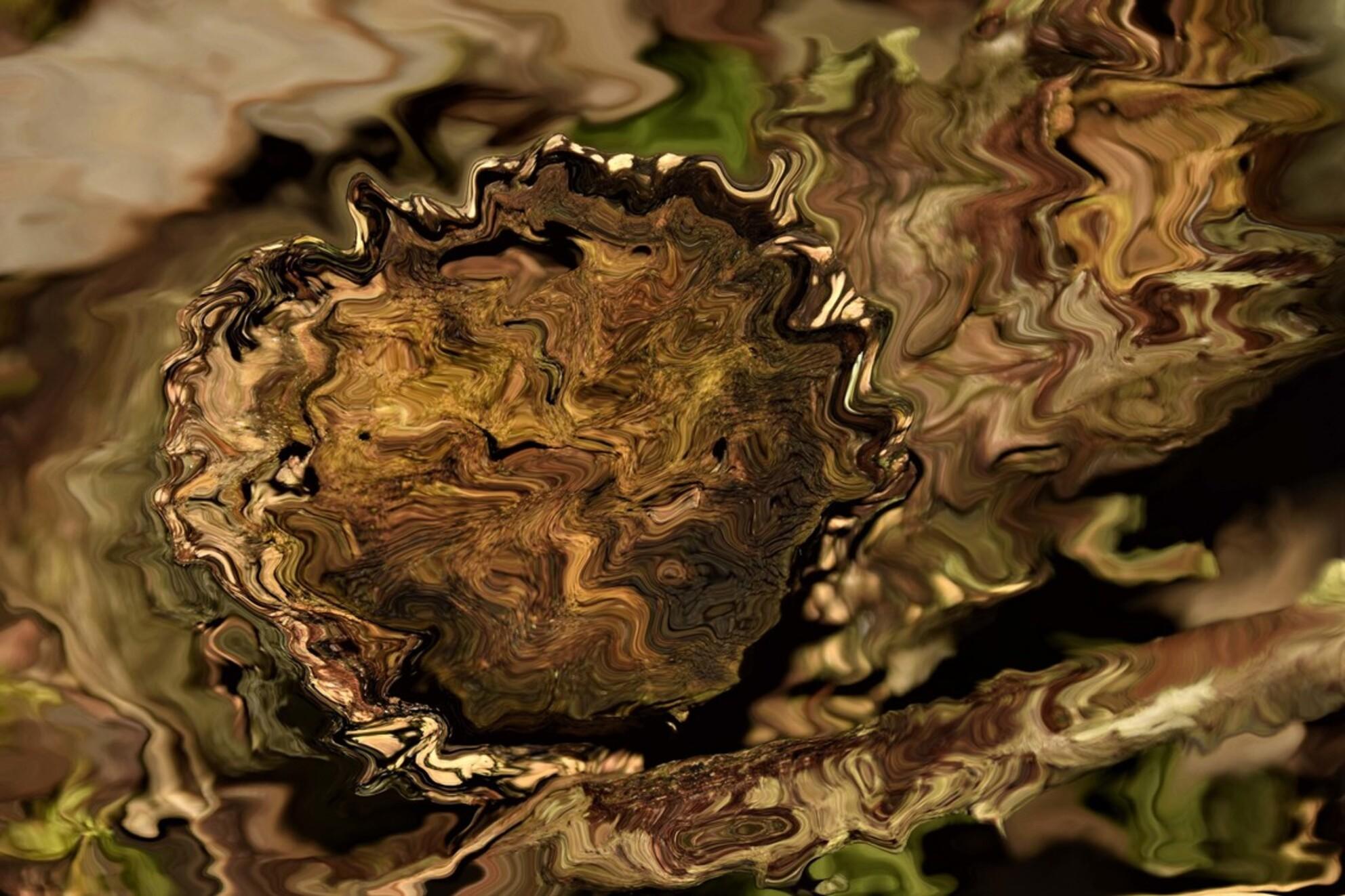 boomstronk - probeerseltje3.2 boomstronk - foto door jeje63 op 05-03-2021 - deze foto bevat: boom, natuur, bewerkt - Deze foto mag gebruikt worden in een Zoom.nl publicatie