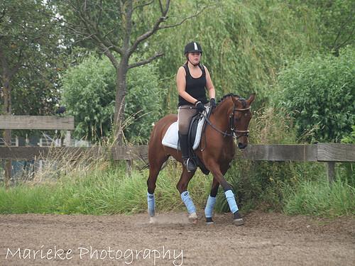 Paardrijden - Dresuurpaard in draf - foto door marieke1995 op 06-05-2011 - deze foto bevat: sport, paard, actie, dressuur