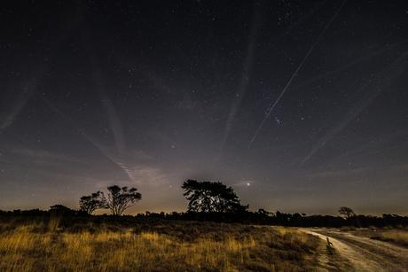 Het Gooi... Wonen onder de sterren :)