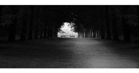 rust in overvloed - lekker een dagje weg de rust opzoeken toen vond ik deze locatie! een romantisch plekje voor 2 - foto door pixellaar op 28-03-2010 - deze foto bevat: landschap, rhenen, rust, romantisch