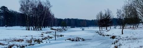 Panorama Saure