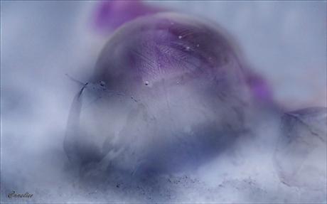 bevroren zeepbel...