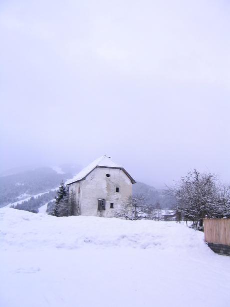 Winter Verlaten Schuur