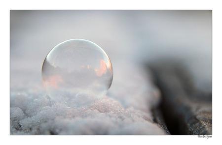 Heldere zeepbel - - - foto door FrankaThijssen op 23-01-2017 - deze foto bevat: wit, licht, winter, zeepbel, bel, bevroren, bellenblaas, rond, frozen