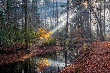 Late herfst