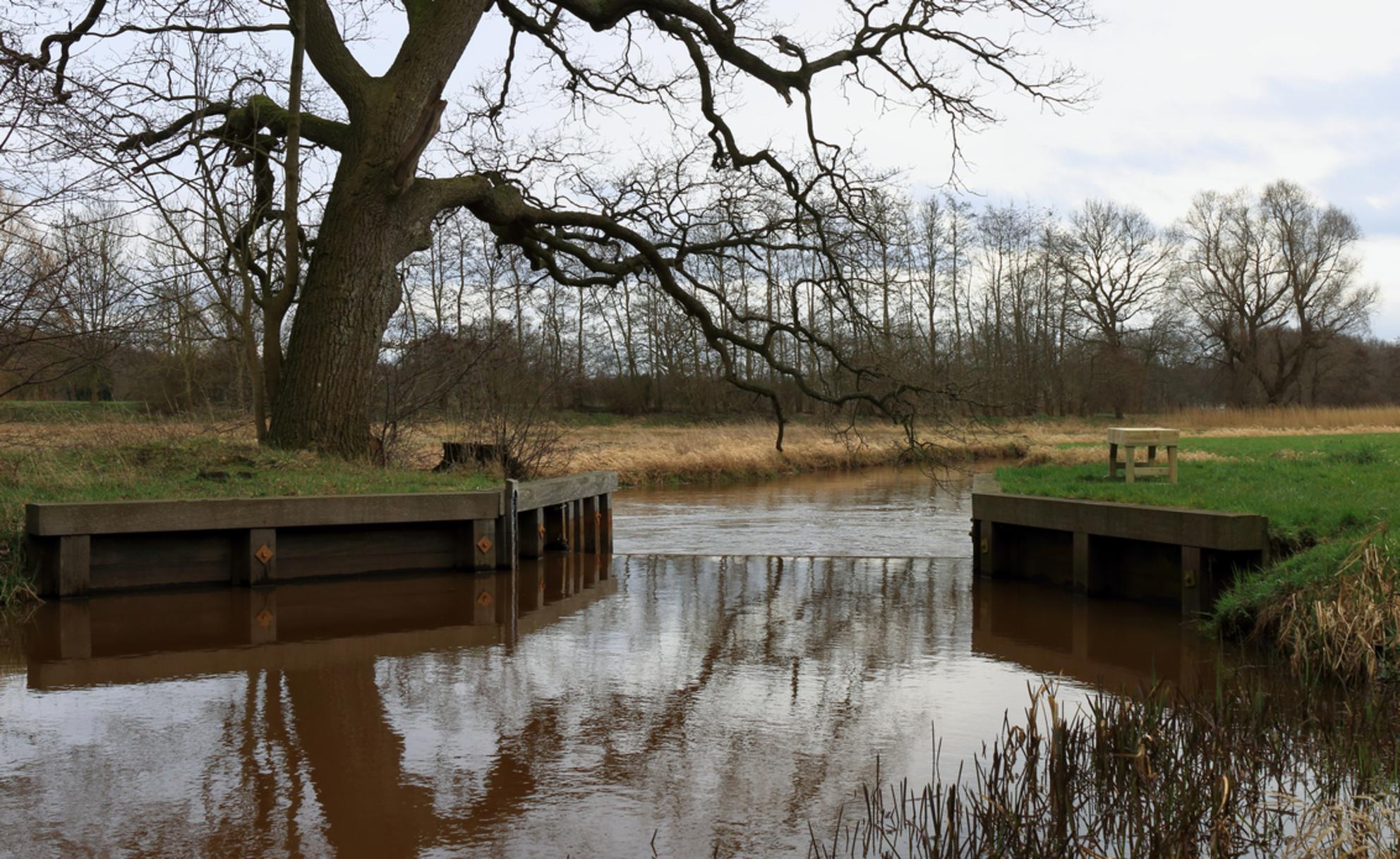 Dickninge - Stuw in het grensriviertje De Reest  tussen Drenthe en Overijsel op het landgoed Dickninge te De Wijk - foto door dyjaf op 20-03-2017 - deze foto bevat: water, rivier, dickninge, de reest, de Wijk - Deze foto mag gebruikt worden in een Zoom.nl publicatie