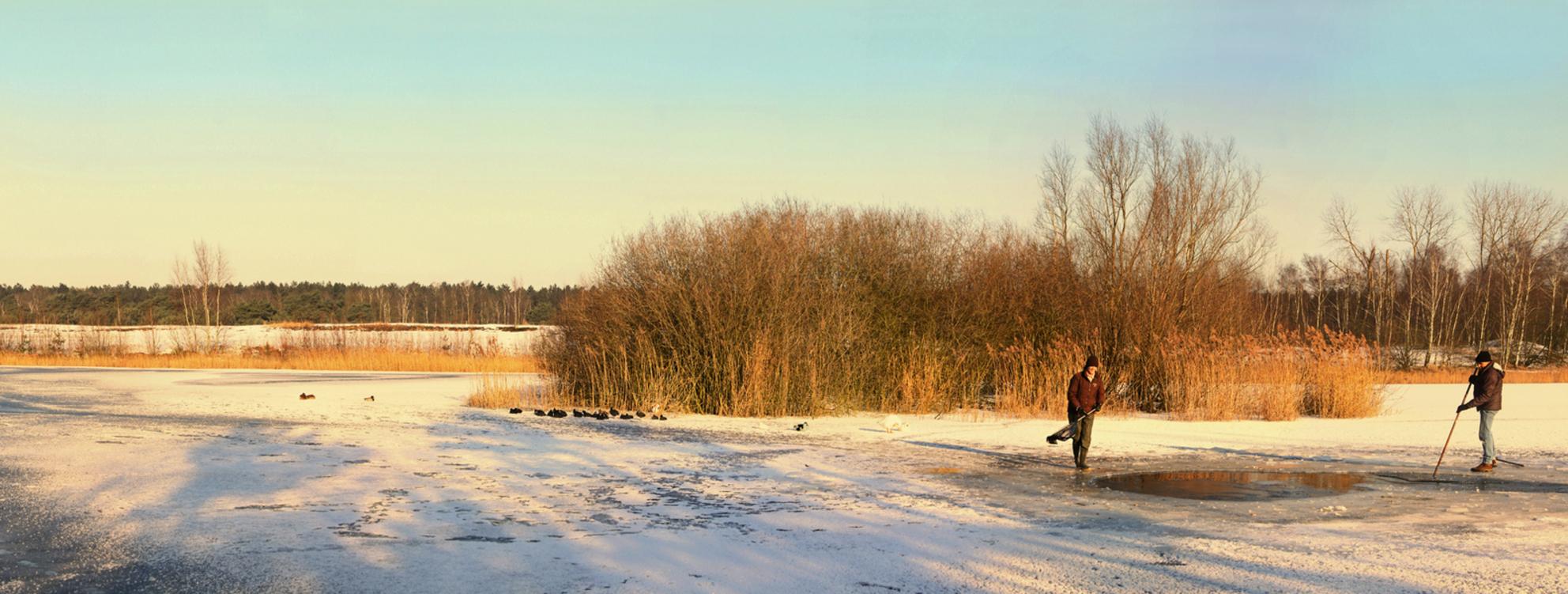 Vogelbescherming in de Sahara - Aanvulling bij de vorige upload een panorama gemaakt uit 8 vertikale fotos. Rond 10 h 's ochtends gemaakt met behulp van het warme ochtendlicht in de - foto door kosmopol op 08-02-2012 - deze foto bevat: winter, lommel, wak, kosmopol, natuurbeschermers - Deze foto mag gebruikt worden in een Zoom.nl publicatie